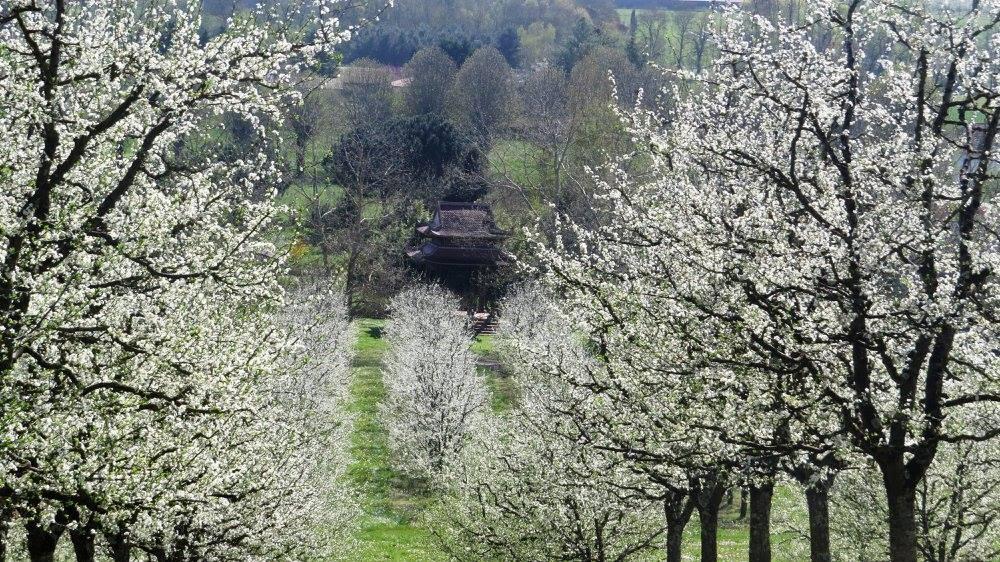 Spring in Plum Village