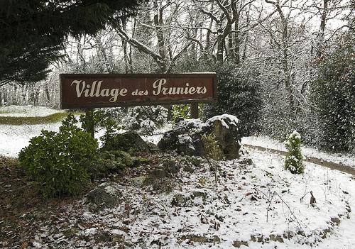 Plum village in Winter